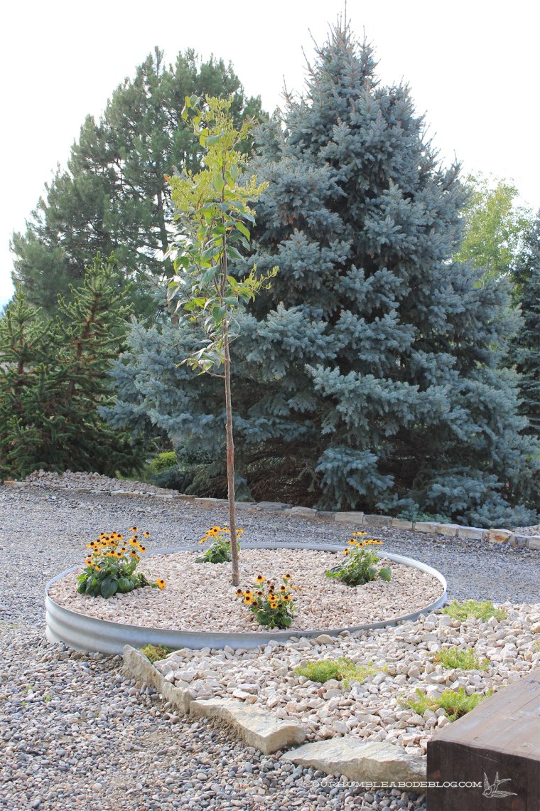 Corrugated-Steel-Planter-with-Rock-Edge