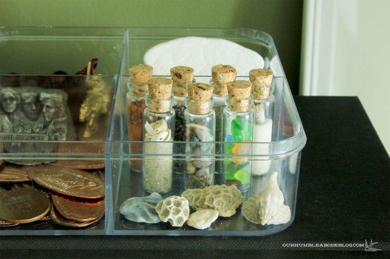 Green-Bookshelves-Tiny-Glass-Jars