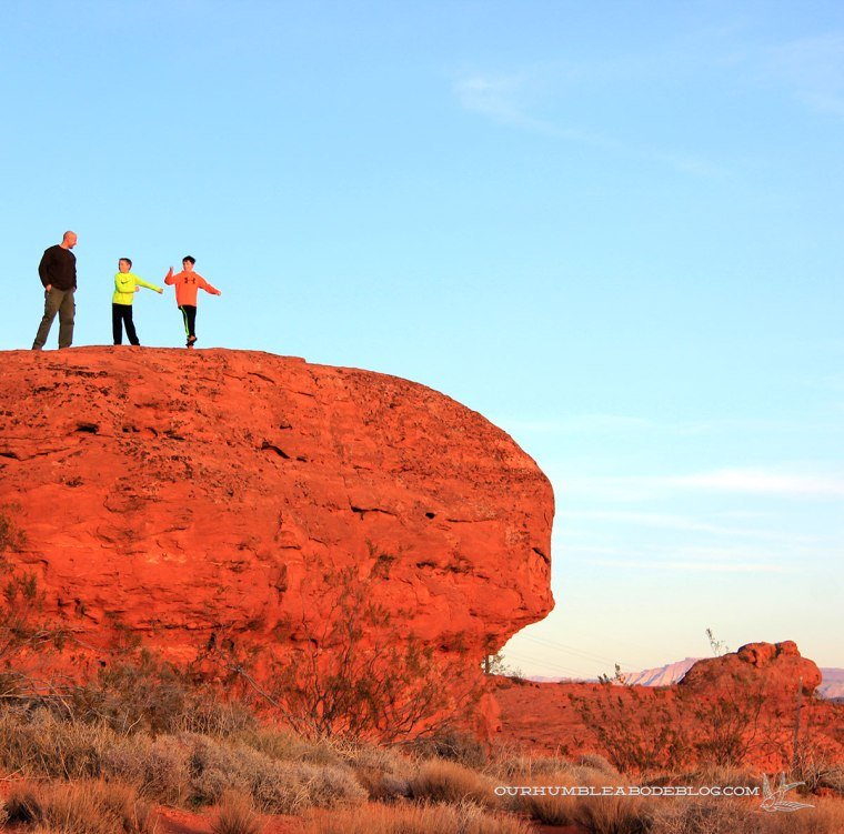 Red-Cliffs-Color.jpg